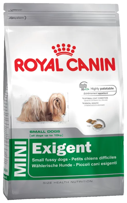 Royal Canin для кошек: обзор видов, состав, советы ветеринара